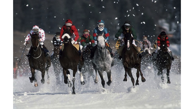 108/136 - Horses on Ice in St Moritz - Switzerland, 1989.
